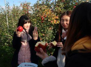 青森県国際交流ジャンボリーに参加しました